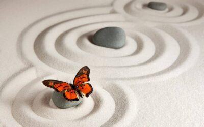 La Meditazione come Educazione alla Vita Interiore