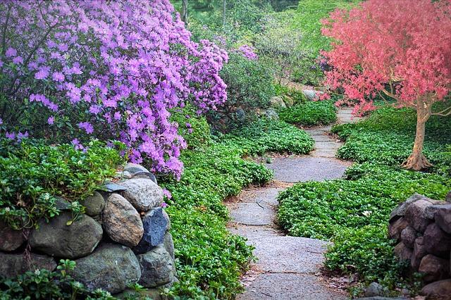 Come vivere in salute durante  la Primavera e adattarsi alla sua energia