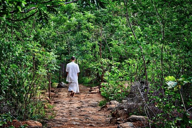 Meditare in cammino
